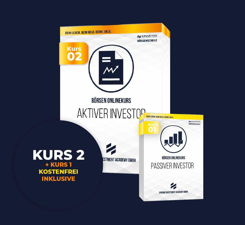Geld in Aktien anlegen für Anfänger Börsen Onlinekurs 2 - der aktive Investor